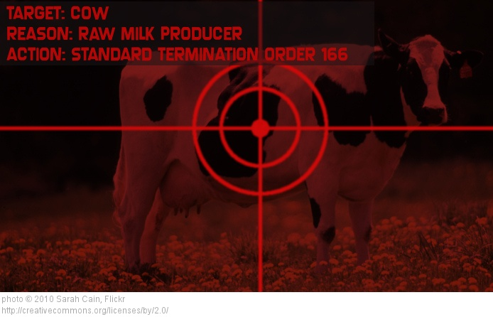 Raw Milk Cow